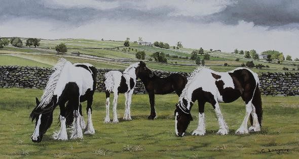 (w) Mares & Foals