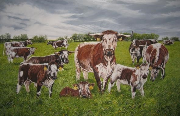(w) Wellhead Longhorns